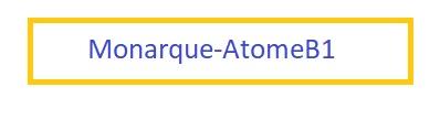 Hockey Les Monarques-AtomeB1